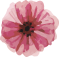 pink and gray watercolor flower graphics-9.png